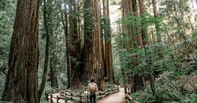 Top 10 Best National Parks In The World