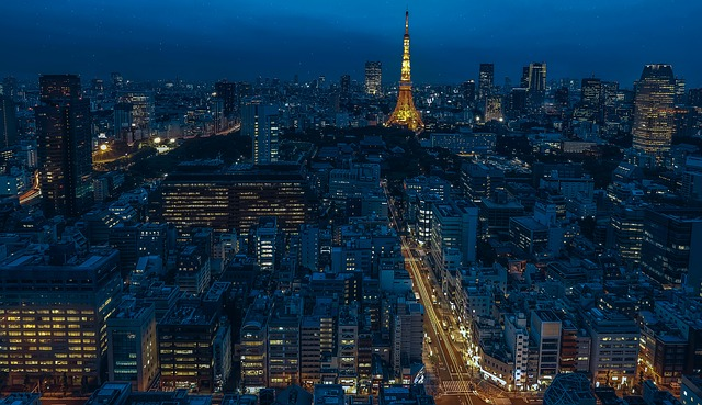 Tokyo, Japan, 13,500 sq. km – Top 10 Largest Cities in the World