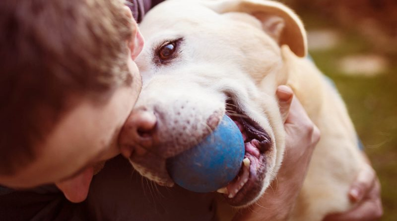 10 Tips for Raising a Happy Pet