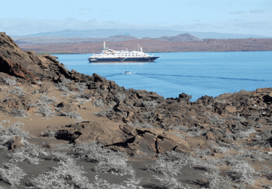 5 Tips On Scoring The Best Galapagos Cruise Deal