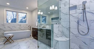 5 Reasons Why You Should Consider Frameless Shower Doors