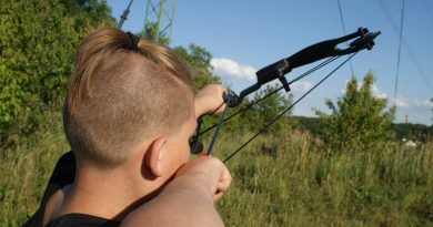 Bows vs Guns: Why You Need a Good Bow for Survival