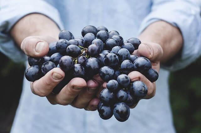Buy organic food online in India