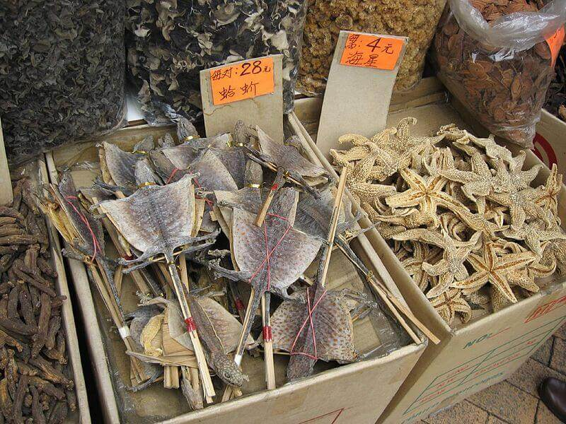 Dried Lizards