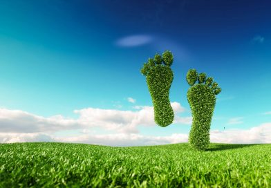 5 Green Ways to Reduce Your Carbon Footprint